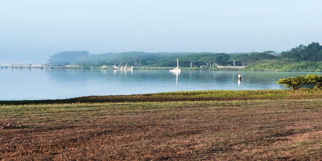 Bay in morning